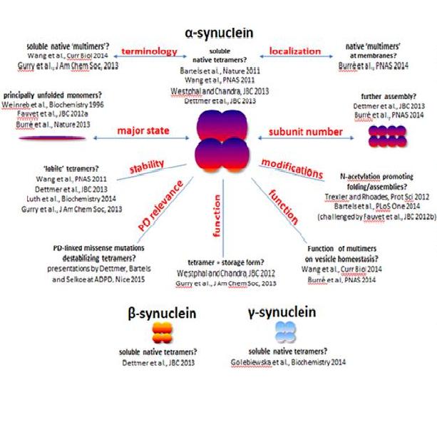 asynuclein
