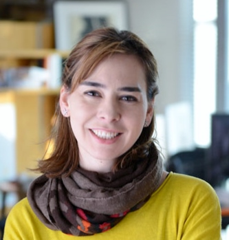 Dina Katabi